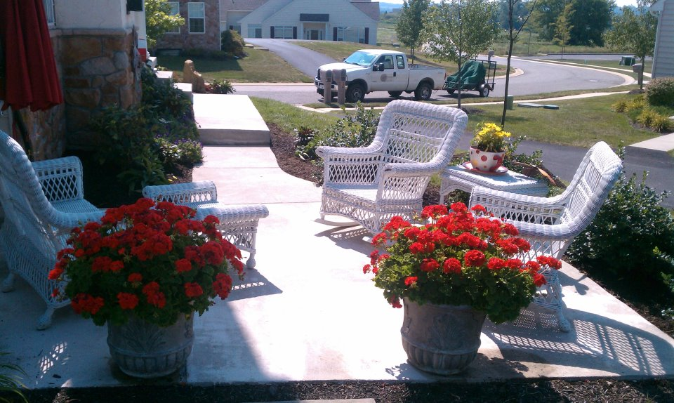 Dos and Don'ts for a Great Landscape